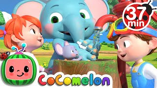 Wash Your Hands Song + More Nursery Rhymes & Kids Songs - CoComelon