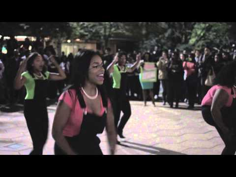 2014 Temple University Yard Show - Delta Mu Chapter of Alpha Kappa Alpha Sorority, Incorporated