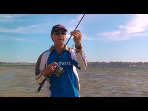 Perth Fishing TV Ep01 - fishing reports, flathead, yellowtail kings, picking feed times