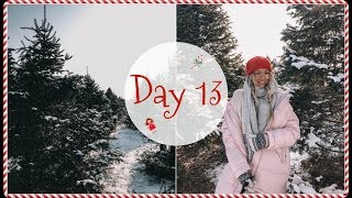 VLOGMAS DAY 13 // OMG our tree almost fell on us...