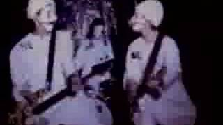 MCRACKINS-Stupid is as Stupid Does 1995