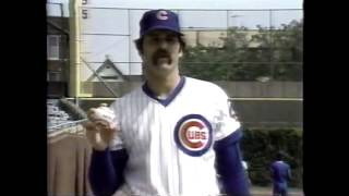 The Chicago Cubs. 1982