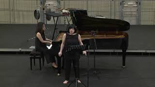 Daniele Bravi, Lettere dal manicomio. Il lamento del Tasso per voce e pianoforte (2009)
