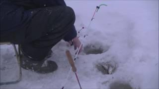 Зимняя рыбалка 11 февраля 2017 снасть вертолёт река Локчим Коми