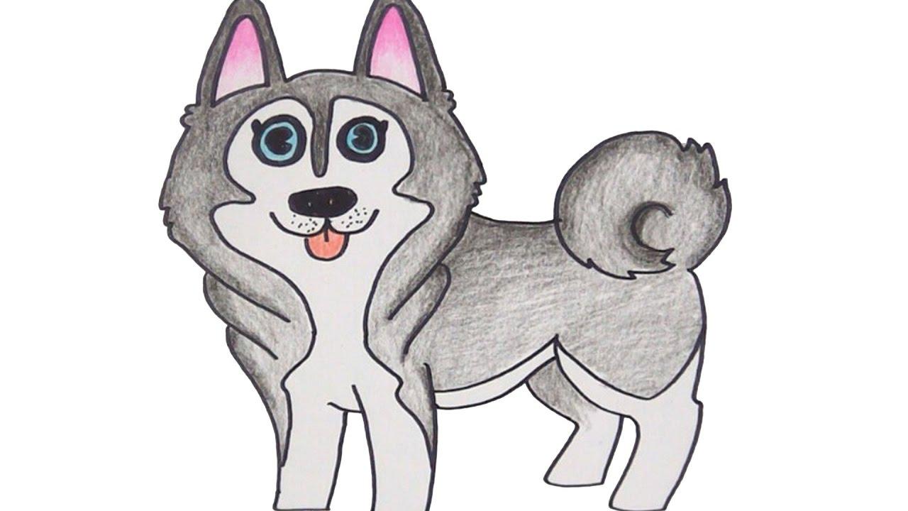 how to draw cute siberian husky dog cartoon youtube