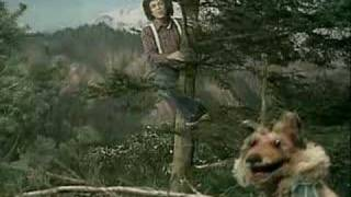 Leo Sayer & The muppets - When i need you
