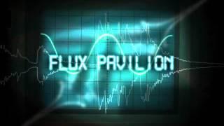 Flux Pavilion Vs Magnetic Man ft. P.Money - I Cant Stop.avi