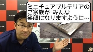 YouTube Captureから.