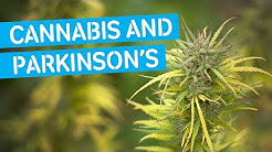 Cannabis Research in Parkinson's