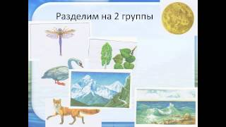 живая и неживая природа презентация