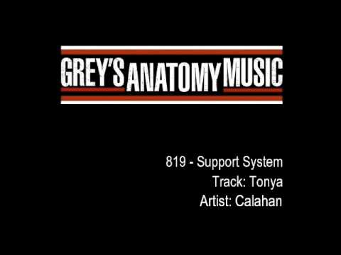 Grey's Anatomy 819 - Calahan -