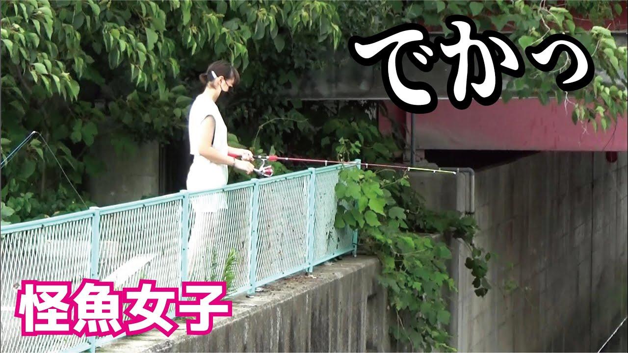 サムネの場所でご当地の可愛いお姉さんがめちゃでかい【怪物魚】を釣りあげた!!!