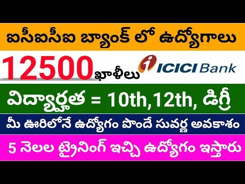ICICI Bank Recruitment For 12500 Vacancies 2020 || Job Updates In Telugu 2020 || ICICI Bank Jobs