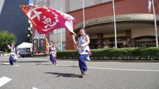 31 十兎 おどるんや2017 モンティグレ演舞場