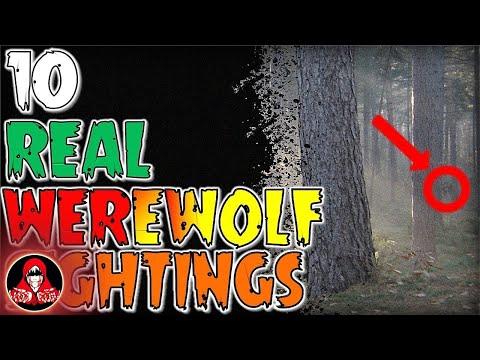 10 REAL Werewolf Sightings