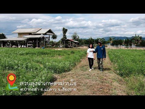 วิสาหกิจชุมชนเกษตรทฤษฎีใหม่ #สวนลุงจ่าเกษตรม่วนใจ