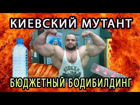 Бабич Ярослав ...