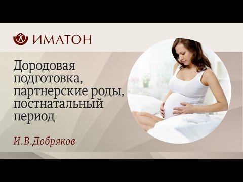 Перинатальные проблемы.Дородовая подготовка, работа с семьей, партнерские роды, постнатальный период