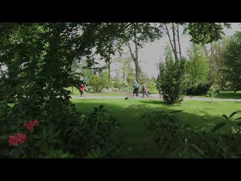 Žampach - Arboretum Žampach - cesta horním parkem