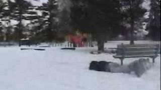 Snowboard Bench