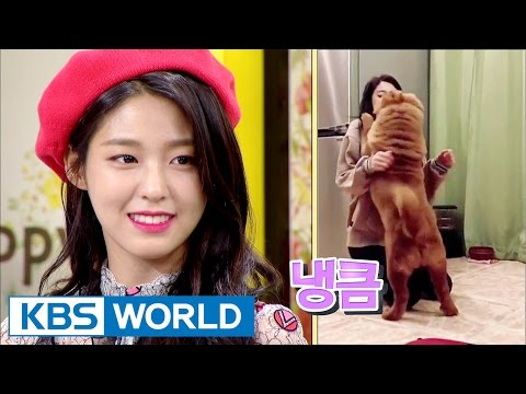 Seol Hyun danced to 'Excuse Me' in front of her dog, and...? [Happy Together / 2017.04.27]
