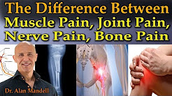 hqdefault - Difference Between Muscle And Bone Back Pain