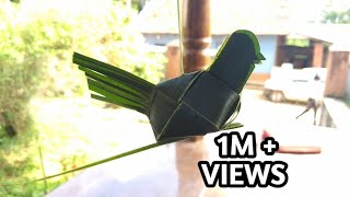 How to make parrot with coconut leaf