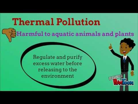 Environmental (Activity Week)