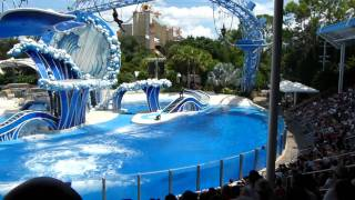The Full Dolphin Dance Show in SeaWorld Orlando 9/11/2011