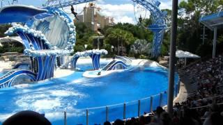 The Full Dolphin Dance Show in SeaWorld Orlando 9/11/2011