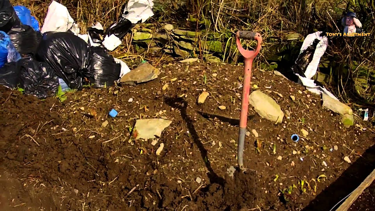 How to build a small wildlife pond youtube for How to build a small pond