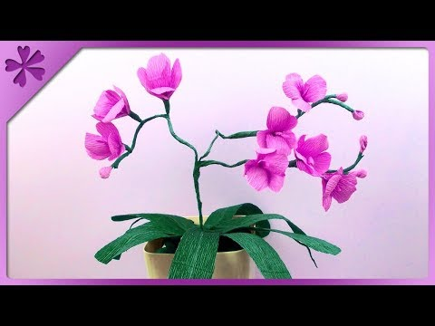 Tissue paper orchid#paper craft flower/How to make Orchids from paper/flower making tutorial.