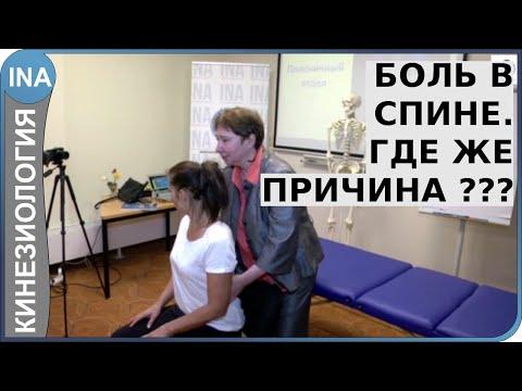 Спина болит в положении сидя