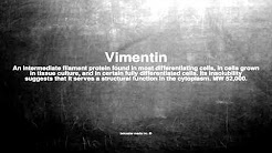 Medical vocabulary: What does Vimentin mean