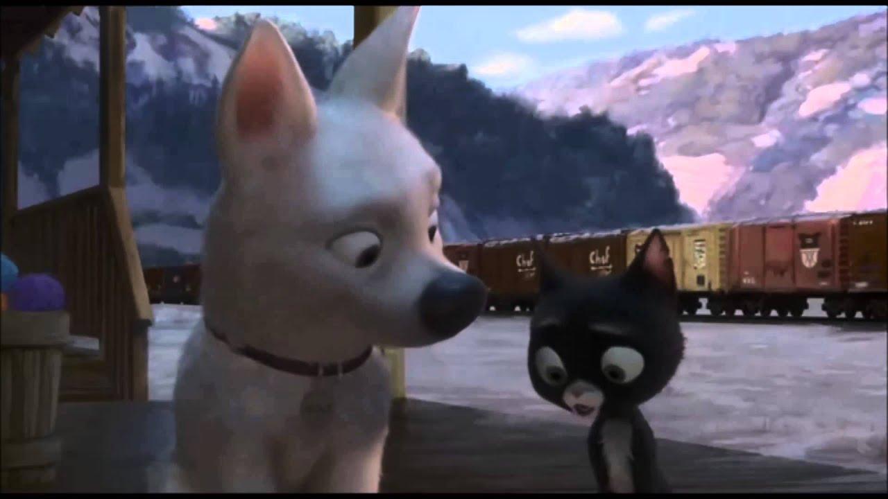Film de chatte blanche