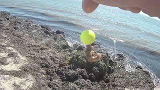 Рыбалка на пеленгаса с Набережное Бывают и такие рыбалки