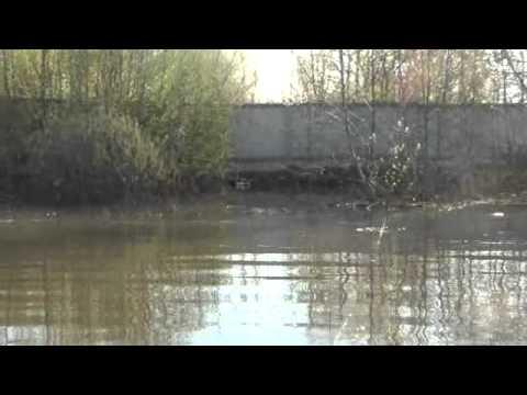 ловля налима на реке клязьма