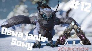 ARK Extinction PL #12 - Snow Owl - Oswajnaie Leczącej Sowy Ark: Survival Evolved gameplay po polsku