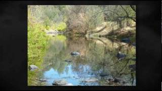 Land for Sale Shasta County - 288 Acres Anderson, Ca