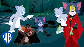 Tom & Jerry | Trick or Treat! | WB Kids
