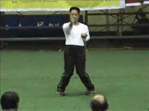 """Lingnaam Wing Chun"" (嶺南詠春拳), Siu Lien Tao"