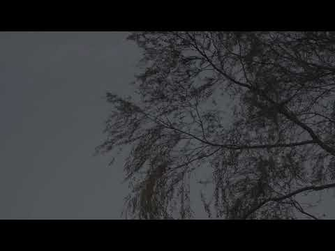 불면 (不眠) - 옥수사진관
