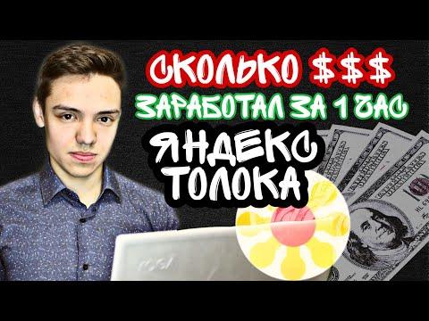 Яндекс Толока ЭКСПЕРИМЕНТ | Сколько денег можно заработать за час сидя дома
