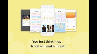 【TriPal】A concept travel app design