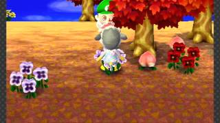 Animal Crossing: New Leaf - Day 6: Ordinance Up!