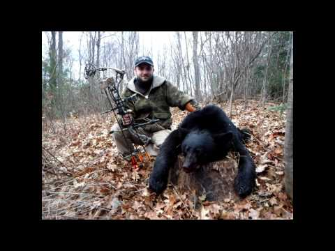 Pennsylvania ARCHERY BEAR Kill - Fast Action