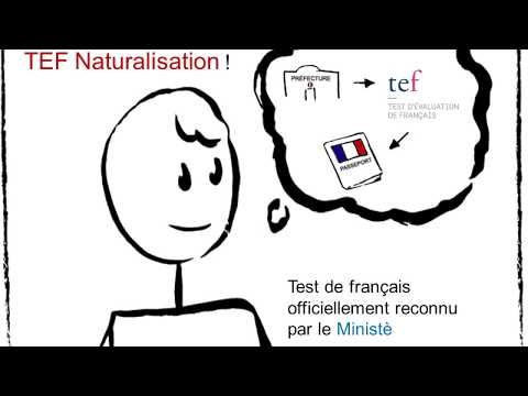 TEF pour La naturalisation: All your Questions Answered
