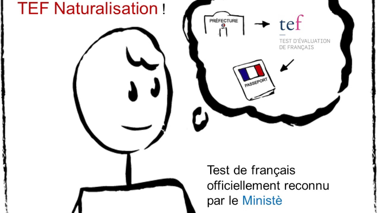 TEF pour La naturalisation: All your Questions Answered - French Exam