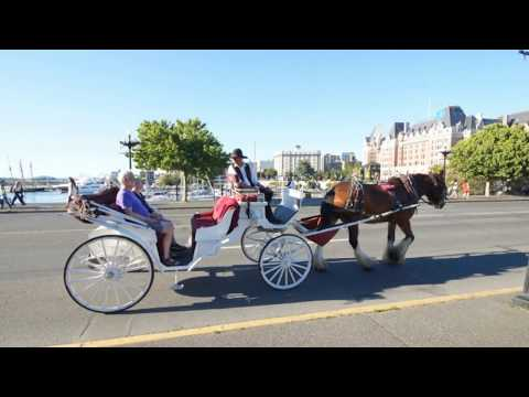 BC Grand Tours - Vancouver Private Sightseeing Tours