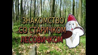 Дед Лесовик